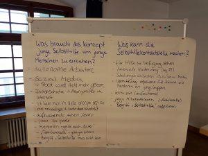 Foto: Flipcharts zu den Themen Junge Selbsthilfe